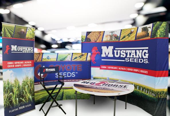 MustangSeeds2_593x403